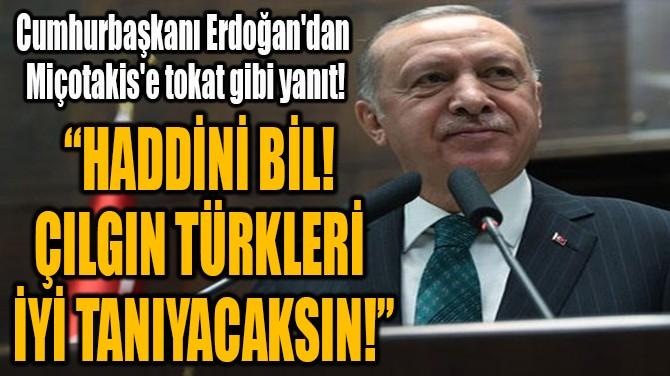 """""""HADDİNİ BİL!  ÇILGIN TÜRKLERİ  İYİ TANIYACAKSIN!"""""""