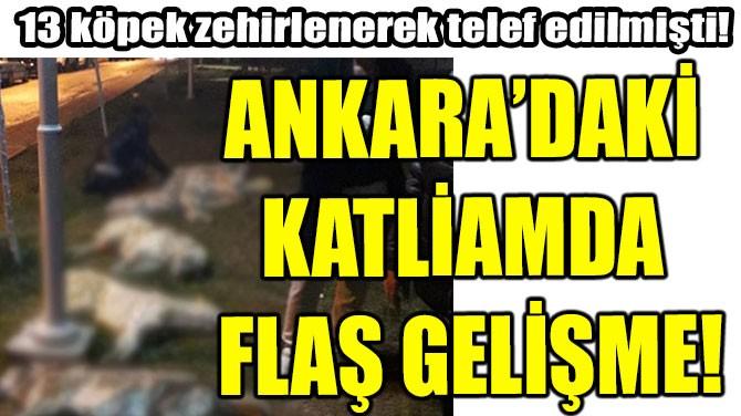 ANKARA'DAKİ KATLİAMDA FLAŞ GELİŞME!