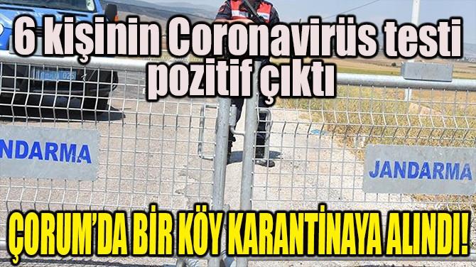 ÇORUM'DA BİR KÖY KARANTİNAYA ALINDI!
