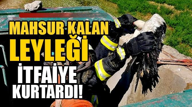 MAHSUR KALAN LEYLEĞİ İTFAİYE KURTARDI!