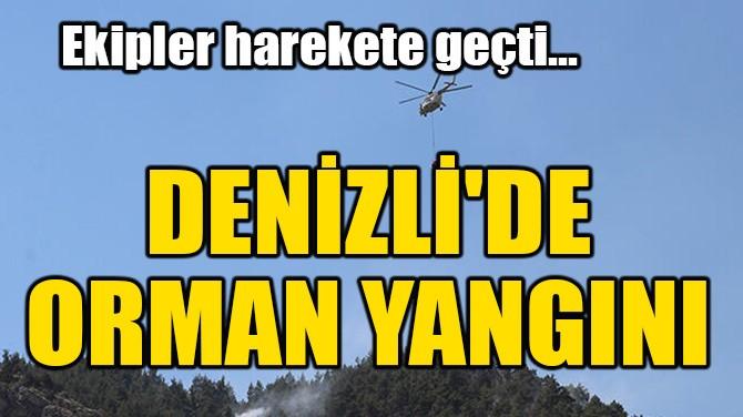 DENİZLİ'DE ORMAN YANGINI!