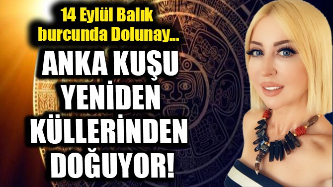 ANKA KUŞU YENİDEN KÜLLERİNDEN DOĞUYOR!