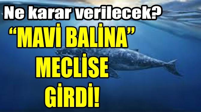 """""""MAVİ BALİNA"""" MECLİSE GİRDİ"""