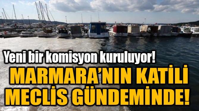 MARMARA'NIN KATİLİ MECLİS GÜNDEMİNDE!