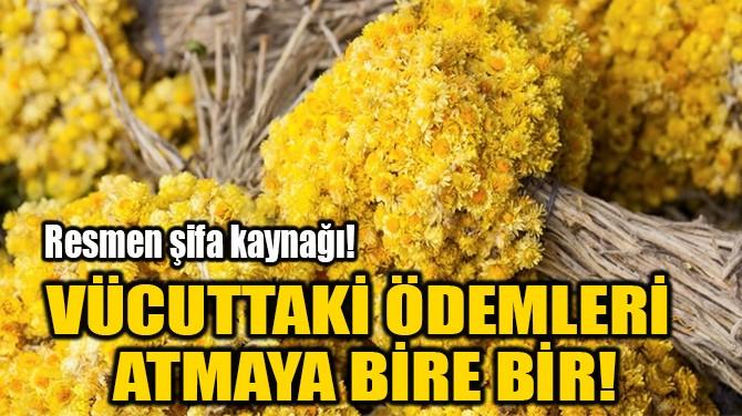 VÜCUTTAKİ ÖDEMLERİ  ATMAYA BİRE BİR!