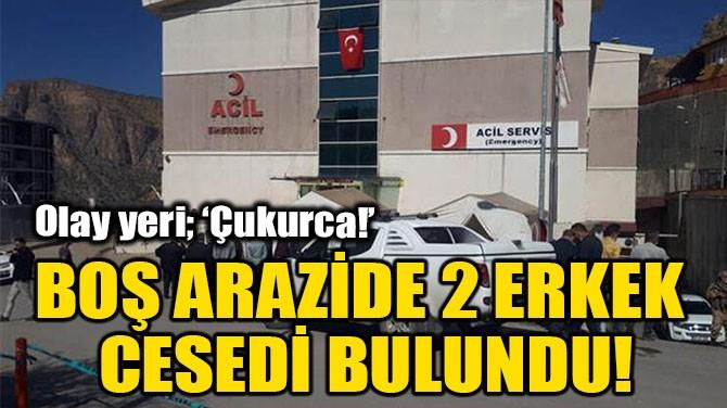 BOŞ ARAZİDE 2 ERKEK CESEDİ BULUNDU!