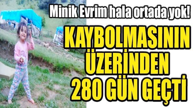 MİNİK EVRİM 280 GÜNDÜR ORTADA YOK