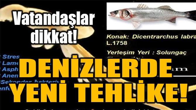 DENİZLERDE  YENİ TEHLİKE!