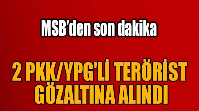 2 PKK/YPG'Lİ TERÖRİST  GÖZALTINA ALINDI