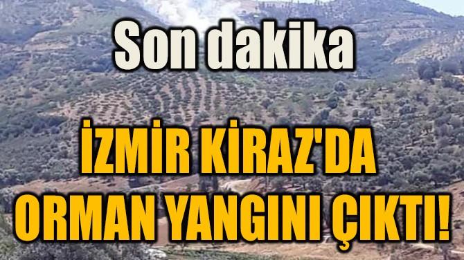 İZMİR KİRAZ'DA  ORMAN YANGINI ÇIKTI!