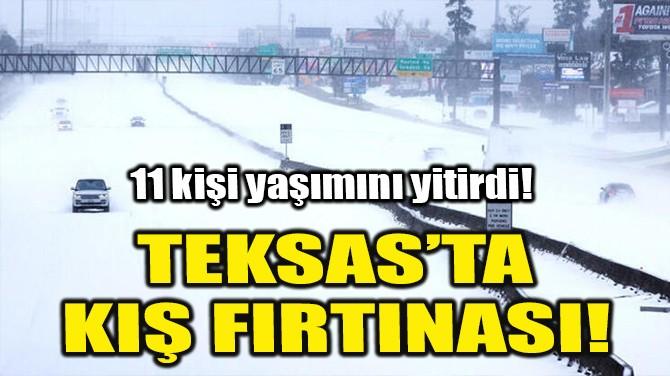 TEKSAS'TA KIŞ FIRTINASI!