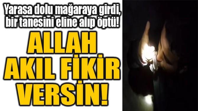 ALLAH  AKIL FİKİR  VERSİN! MAĞARAYA GİRİP, YARASA ÖPTÜ!