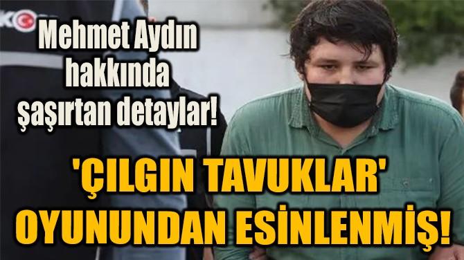 'ÇILGIN TAVUKLAR'  OYUNUNDAN ESİNLENMİŞ!