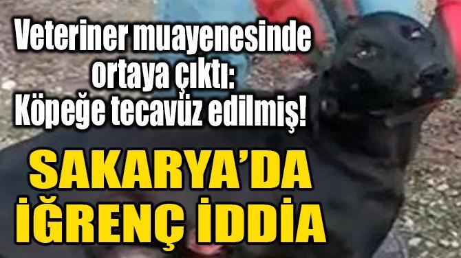 SAKARYA'DA İĞRENÇ İDDİA!