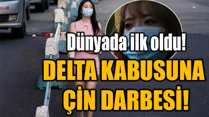 DELTA KABUSUNA  ÇİN DARBESİ!
