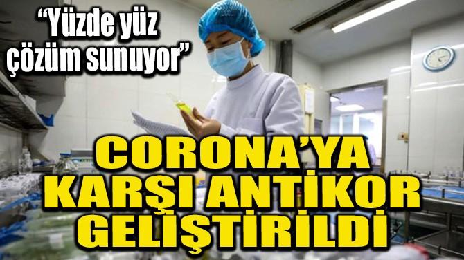 CORONA'YA KARŞI ANTİKOR GELİŞTİRİLDİ