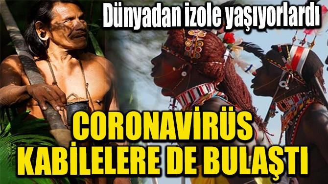 CORONAVİRÜS KABİLELERE DE BULAŞTI