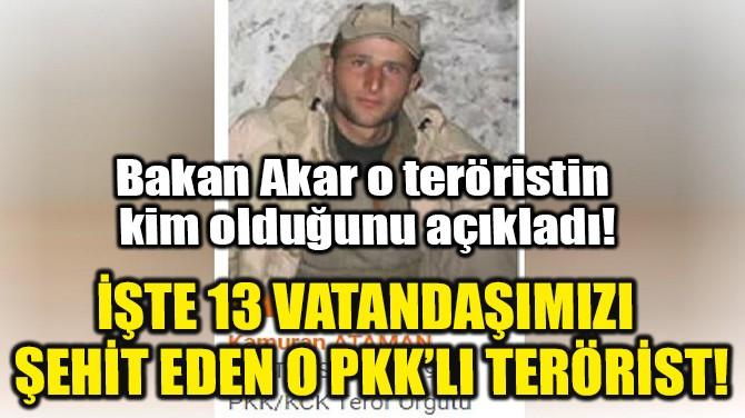 İŞTE 13 VATANDAŞIMIZI ŞEHİT EDEN O PKK'LI TERÖRİST!