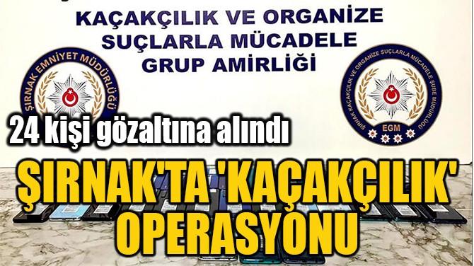 ŞIRNAK'TA 'KAÇAKÇILIK'  OPERASYONU