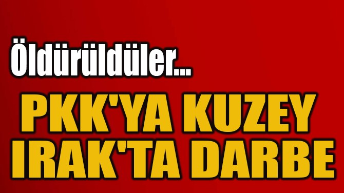 PKK'YA KUZEY  IRAK'TA DARBE