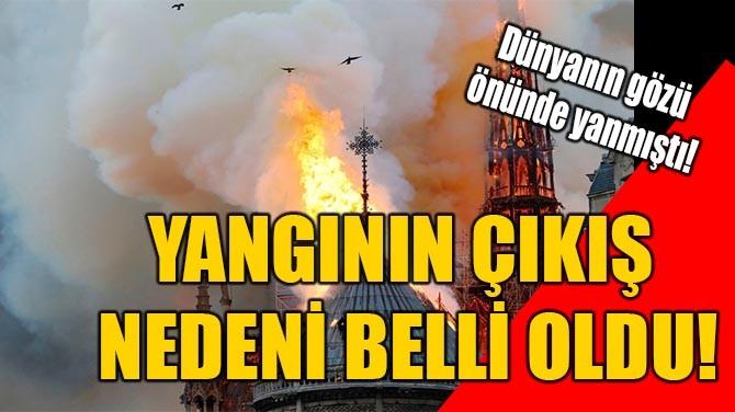 NOTRE-DAME KATEDRALİ'NDEKİ YANGININ ÇIKIŞ NEDENİ...
