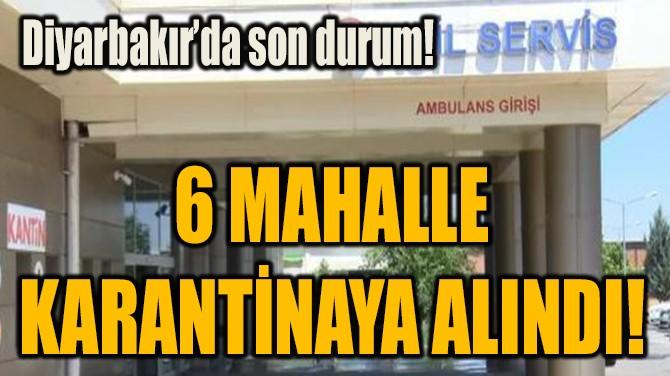 6 MAHALLE  KARANTİNAYA ALINDI!