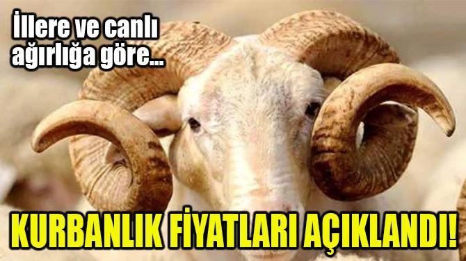 KURBANLIK FİYATLARI AÇIKLANDI!
