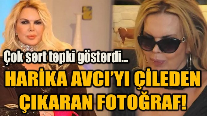 HARİKA AVCI'YI ÇİLEDEN  ÇIKARAN FOTOĞRAF!