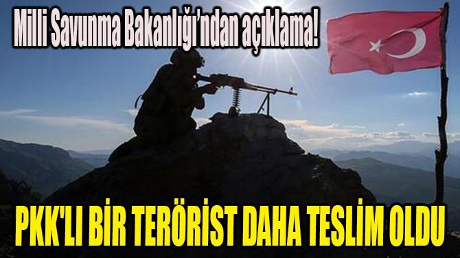 PKK'LI BİR TERÖRİST DAHA TESLİM OLDU