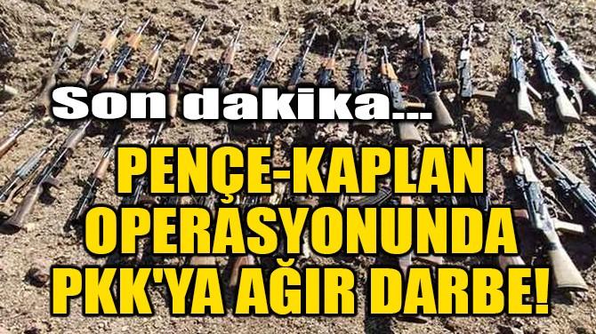 PENÇE-KAPLAN OPERASYONUNDA PKK'YA AĞIR DARBE!