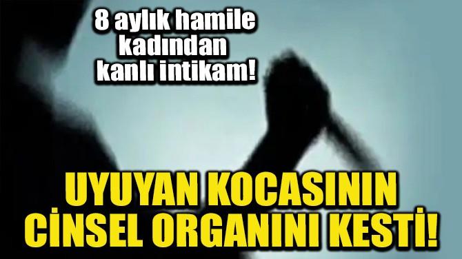 UYUYAN KOCASININ CİNSEL ORGANINI KESTİ!