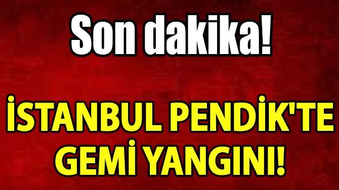 İSTANBUL PENDİK'TE GEMİ YANGINI!