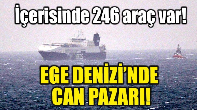 EGE DENİZİ'NDE CAN PAZARI!