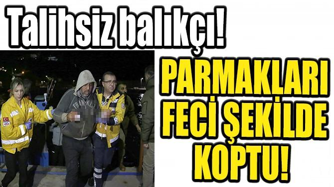ANTALYA'DA BİR BALIKÇININ PARMAKLARI FECİ ŞEKİLDE KOPTU!