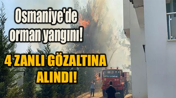 OSMANİYE'DE ORMAN YANGINI! 4 ZANLI GÖZALTINA ALINDI!