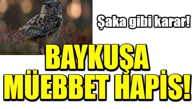 BAYKUŞ MÜEBBET HAPİS CEZASINA ÇARPTIRILDI!