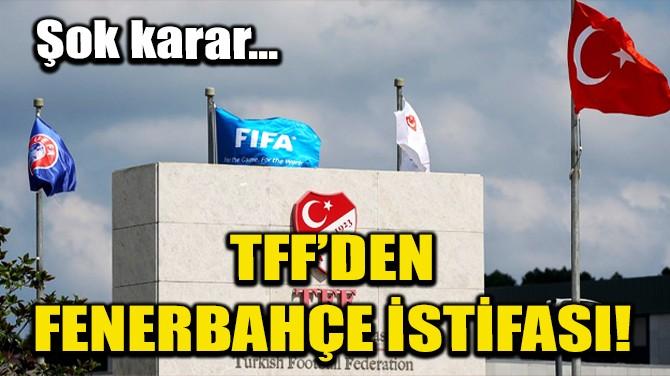 TFF'DEN FENERBAHÇE İSTİFASI!