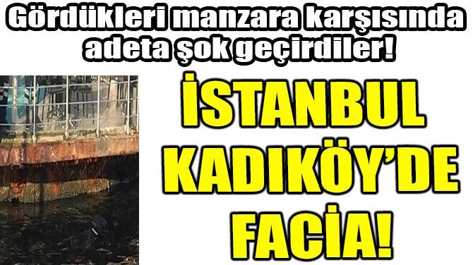 İSTANBUL KADIKÖY'DE FACİA!