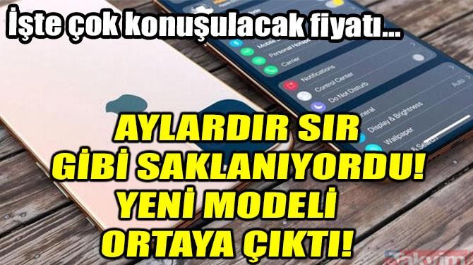 AYLARDIR SIR GİBİ SAKLANIYORDU!