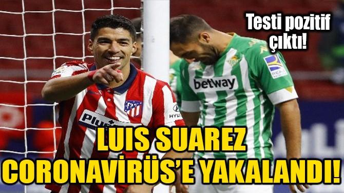 LUIS SUAREZ CORONAVİRÜS'E YAKALANDI!
