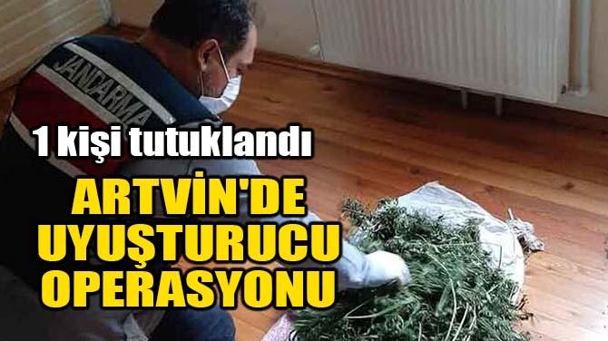 ARTVİN'DE UYUŞTURUCU OPERASYONU!