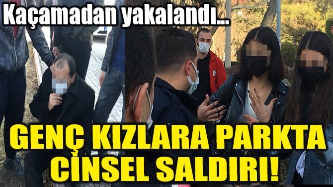 GENÇ KIZLARA PARKTA CİNSEL SALDIRI!