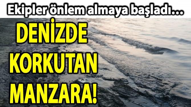 DENİZDE KORKUTAN MANZARA!