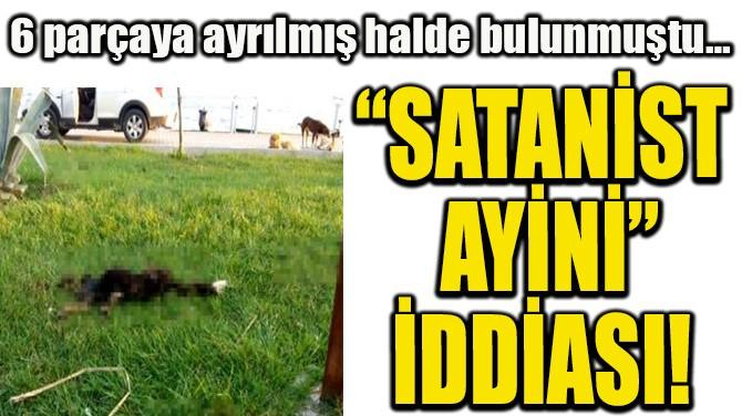 """""""SATANİST AYİNİ"""" İDDİASI!"""