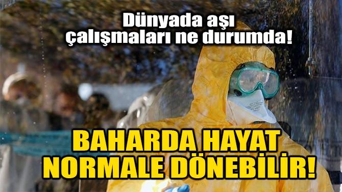 BAHARDA HAYAT NORMALE DÖNEBİLİR!