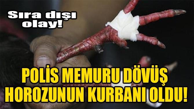 POLİS MEMURU DÖVÜŞ HOROZUNUN KURBANI OLDU!