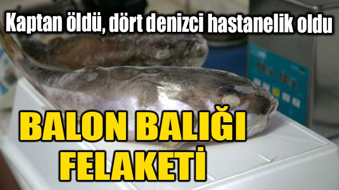 """BALON BALIĞI"" FELAKETİ!"