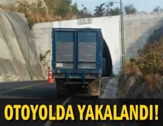 KAN DONDURAN OLAY!.. KAMYONETİN ARKASINDA 9 CESET BULUNDU!..