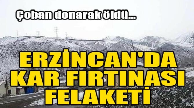 ERZİNCAN'DA KAR FIRTINASI FELAKETİ! ÇOBAN DONARAK ÖLDÜ!