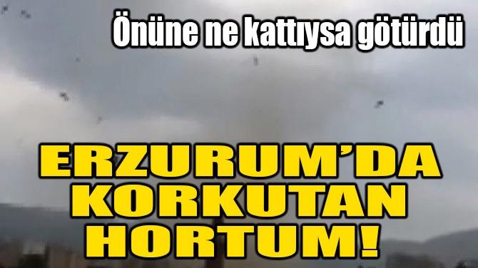 ERZURUM'DA KORKUTAN HORTUM!